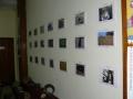 Exposición Naturaleza 5