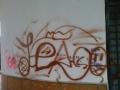 pintadas-3