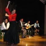 Flamenco en estado puro a través de la Peña El Puchero