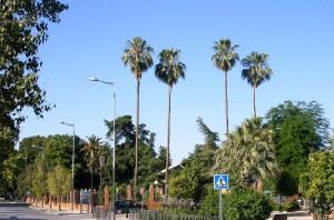 Parque Eduardo Carvajal. Vivero