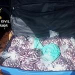 Detenido en Almería un bailenense que transportaba 32 kilos de hachís