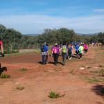 Este sábado se celebra la I Jornada Botánica Dehesa de Burguillos