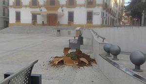 macetero-plaza-reloj
