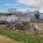 El PSOE denuncia la quema de residuos del vivero junto a un colegio
